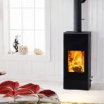austroflamm-mono-stove